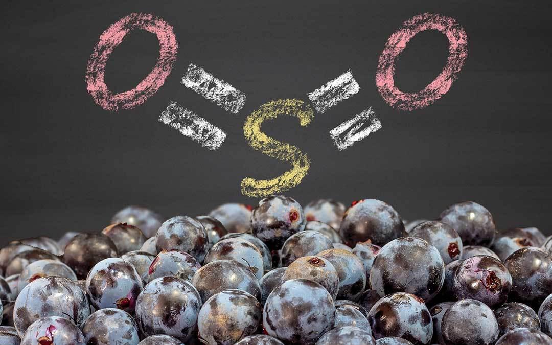 Solfiti nel vino: cosa sono?