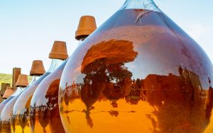 Come-conservare-il-vino-passito