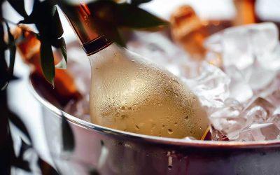 Secchiello del ghiaccio per il vino: come si chiama e perché è utile