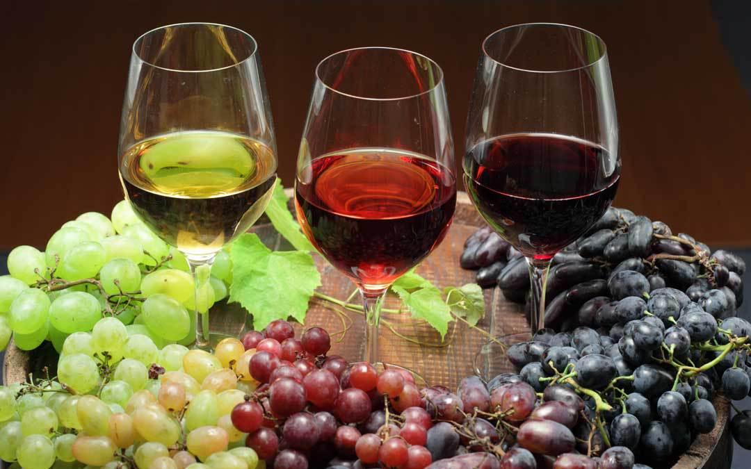 Tipi di vino - Cantine di Dolianova