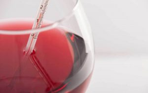 Come funziona il termometro per il vino