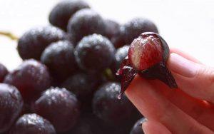Come si chiama la buccia dell'acino dell'uva